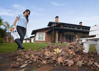 Stihl BGA85 cordless leaf blower