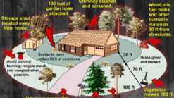 Cal-fire-homeowner-fire-safe-checklist
